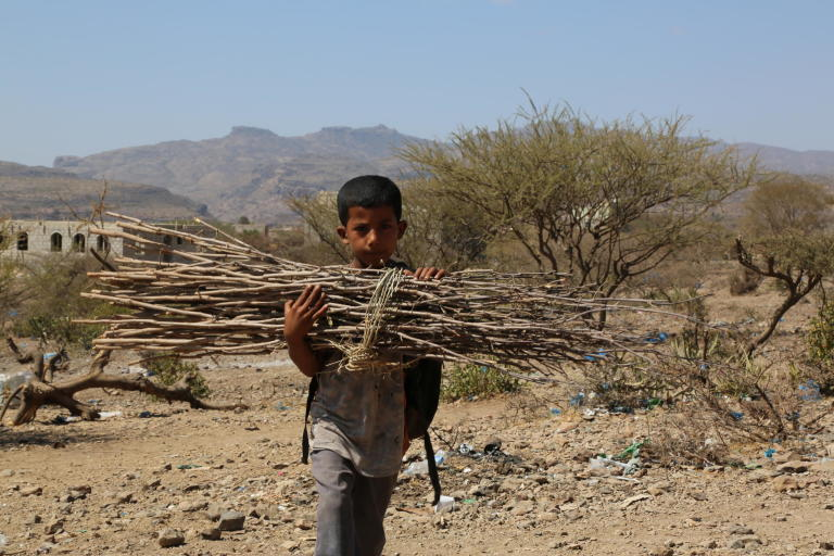 "Geyad Ahmed, 6, is a student in first grade at primary school. He attends school in the mornings. Straight after school he goes to the mountain to collect firewood.  ""I collect firewood every day to help my mother so she can cook for us.""  Photo: Nasser Abdulkareem/NRC"